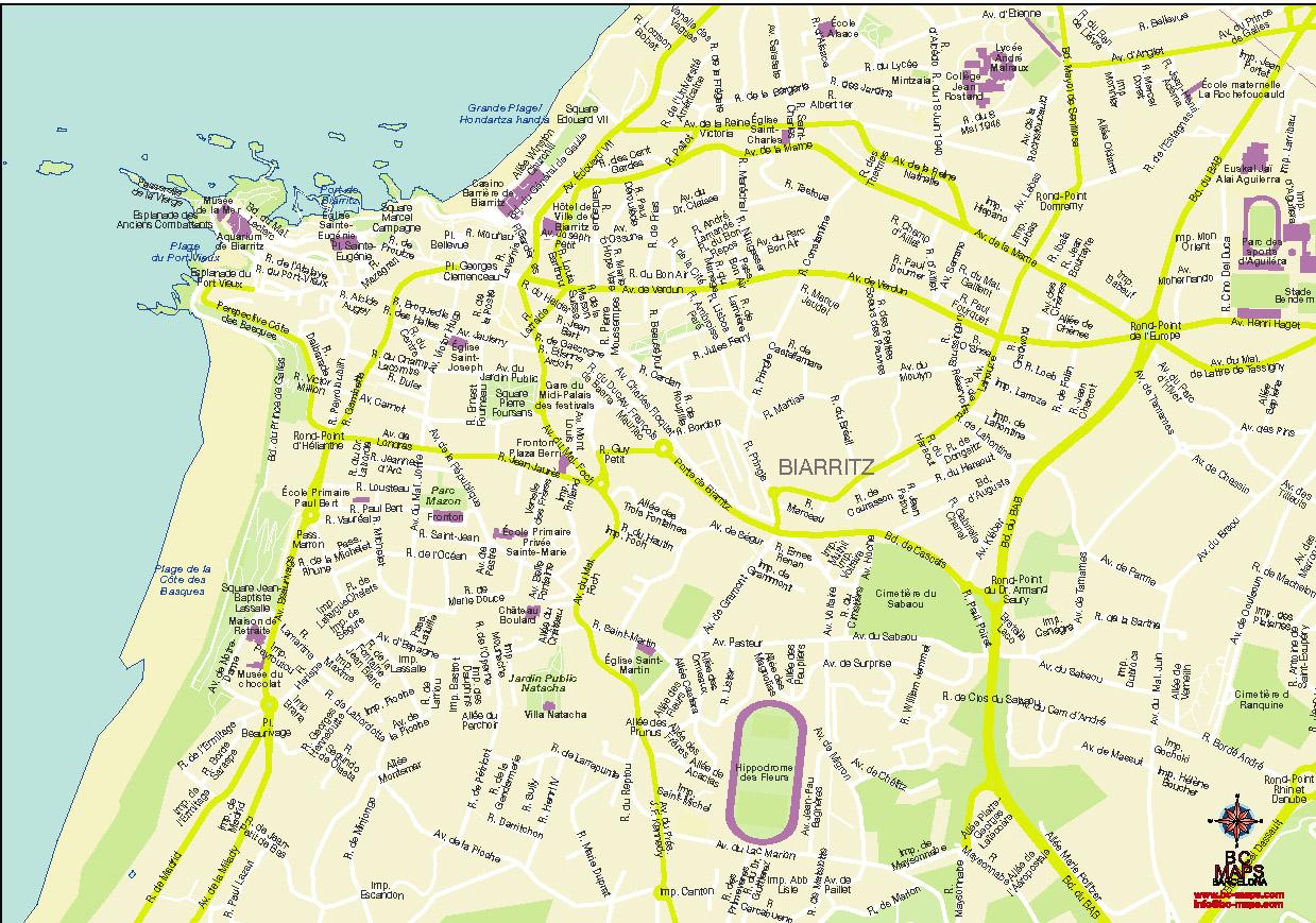 Biarritz plan de ville fond de carte vectoriel illustrator eps